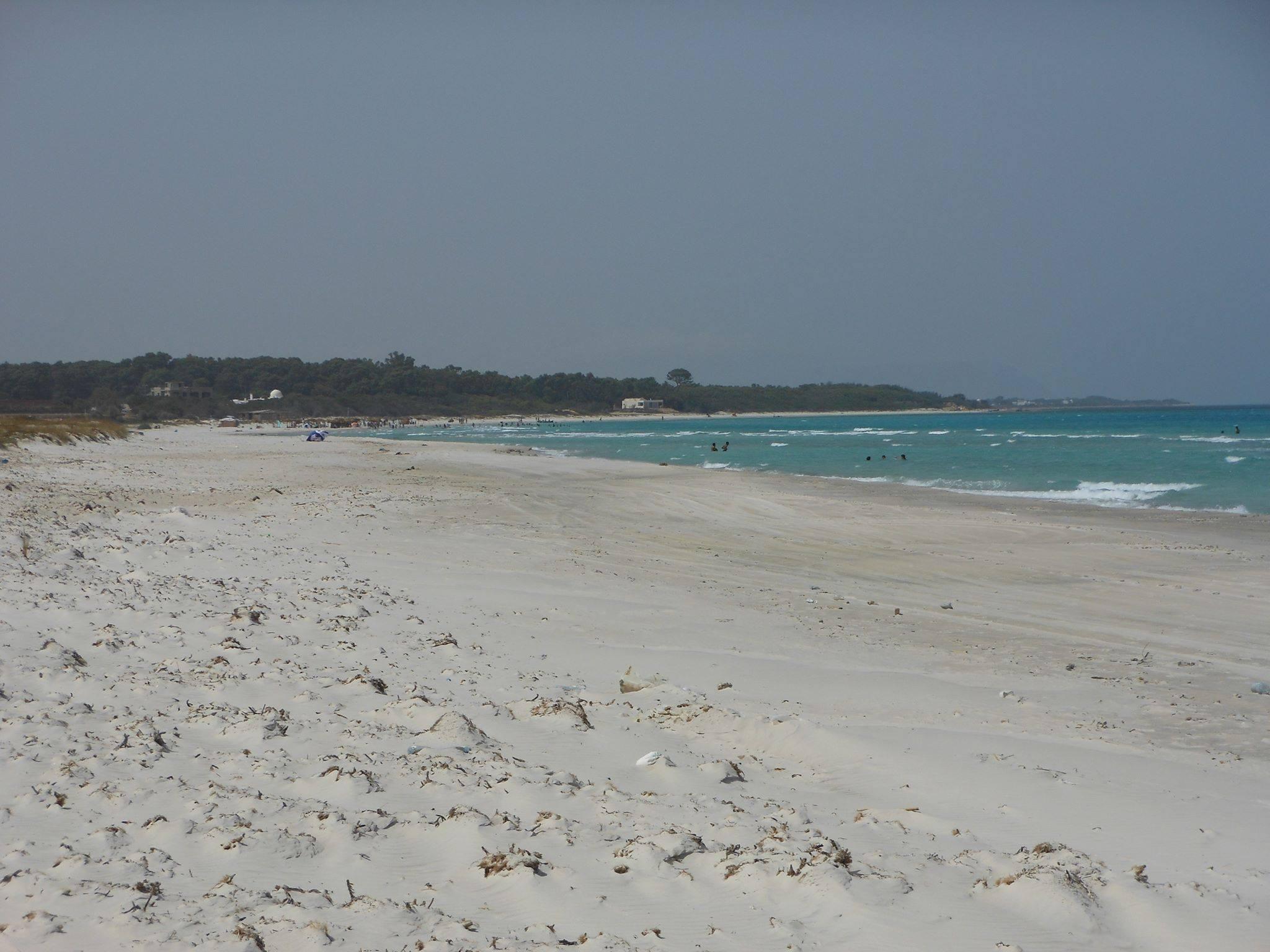 Terrain à hammem el ghzez plage
