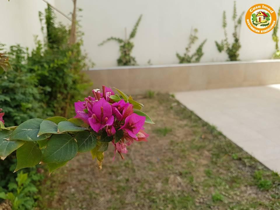 Appartement avec jardin plein soukra